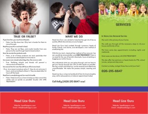 head lice brochure back